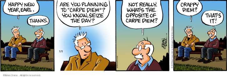 Comic Strip Brian Crane  Pickles 2019-01-01 risk