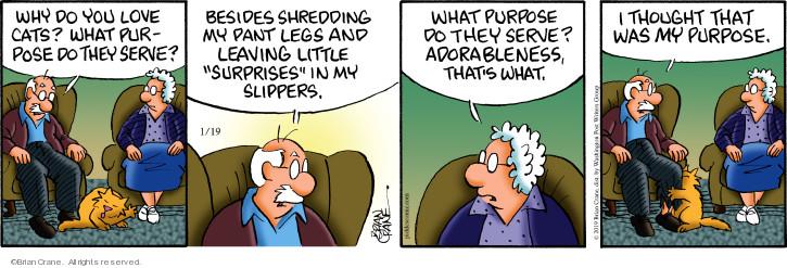 Comic Strip Brian Crane  Pickles 2019-01-19 purpose