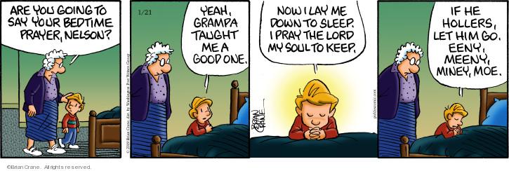 Comic Strip Brian Crane  Pickles 2019-01-21 Nelson
