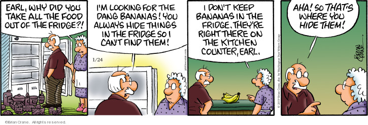 Comic Strip Brian Crane  Pickles 2019-01-24 kitchen