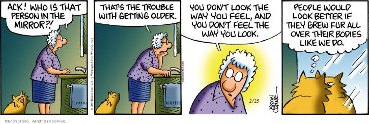 Comic Strip Brian Crane  Pickles 2019-02-25 cat