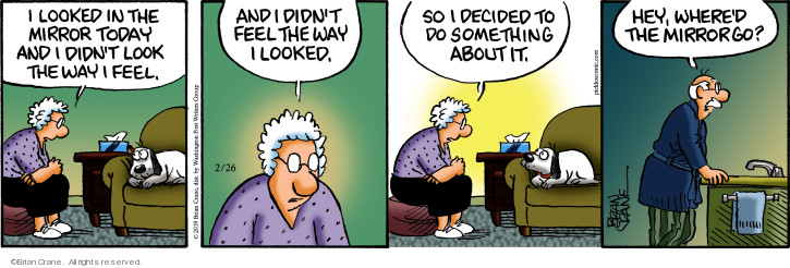 Comic Strip Brian Crane  Pickles 2019-02-26 solution