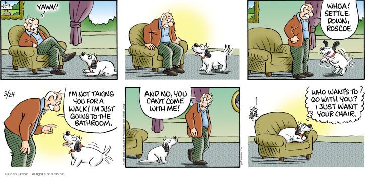 Comic Strip Brian Crane  Pickles 2019-03-24 whoa