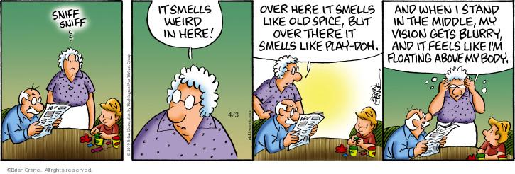 Comic Strip Brian Crane  Pickles 2019-04-03 middle