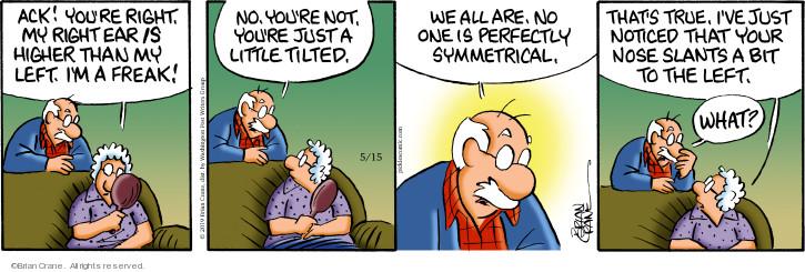 Comic Strip Brian Crane  Pickles 2019-05-15 one