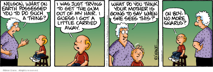 Comic Strip Brian Crane  Pickles 2019-05-30 hair