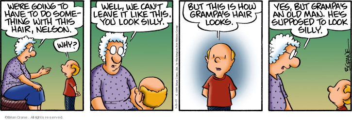 Comic Strip Brian Crane  Pickles 2019-05-31 baldness