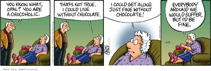 Comic Strip Brian Crane  Pickles 2019-06-08 chocolate