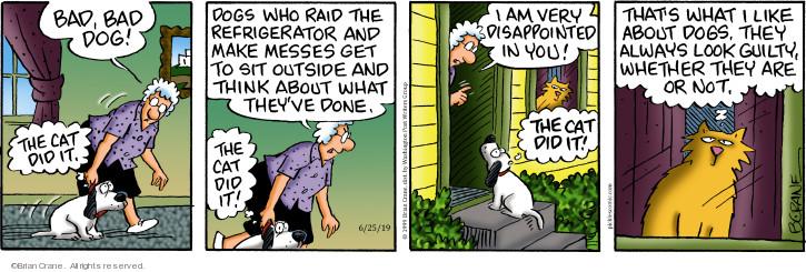 Comic Strip Brian Crane  Pickles 2019-06-25 dog and cat