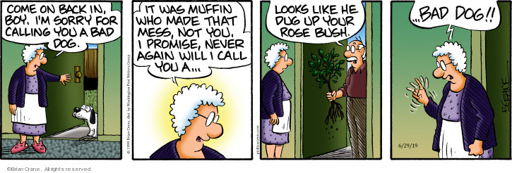 Comic Strip Brian Crane  Pickles 2019-06-29 muffin