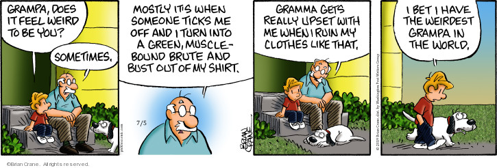 Comic Strip Brian Crane  Pickles 2019-07-05 garment