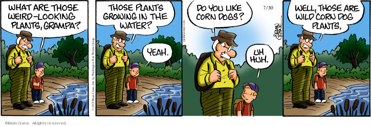 Comic Strip Brian Crane  Pickles 2019-07-30 water