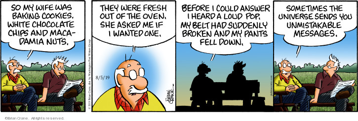Comic Strip Brian Crane  Pickles 2019-08-05 broken