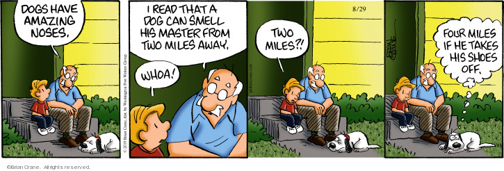 Comic Strip Brian Crane  Pickles 2019-08-29 shoe