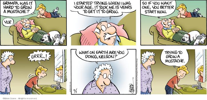 Comic Strip Brian Crane  Pickles 2019-09-01 start