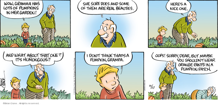 Comic Strip Brian Crane  Pickles 2019-10-27 gardening
