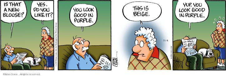 Comic Strip Brian Crane  Pickles 2019-11-04 color