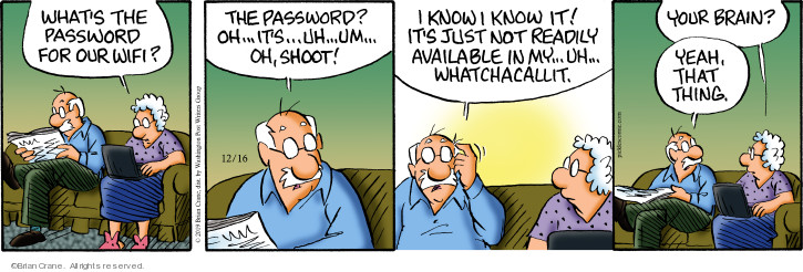 Comic Strip Brian Crane  Pickles 2019-12-16 forget password