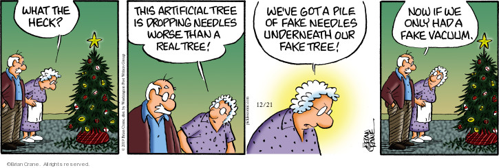 Comic Strip Brian Crane  Pickles 2019-12-21 artificial tree