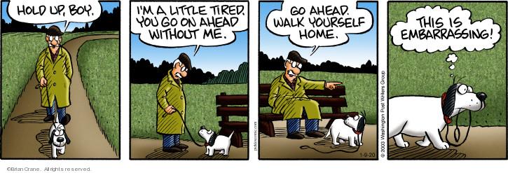 Comic Strip Brian Crane  Pickles 2020-01-09 little