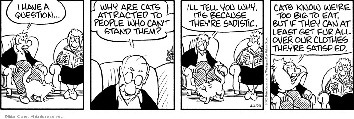 Comic Strip Brian Crane  Pickles 2020-04-04 cat person
