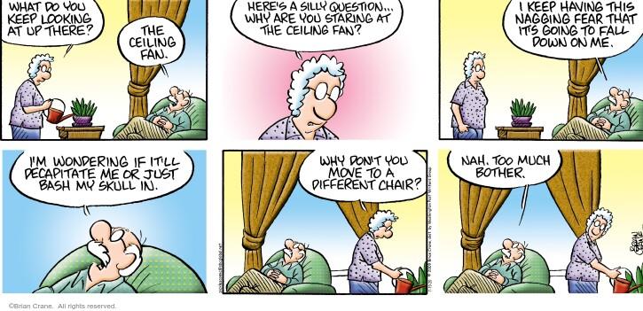 Comic Strip Brian Crane  Pickles 2020-07-19 fall