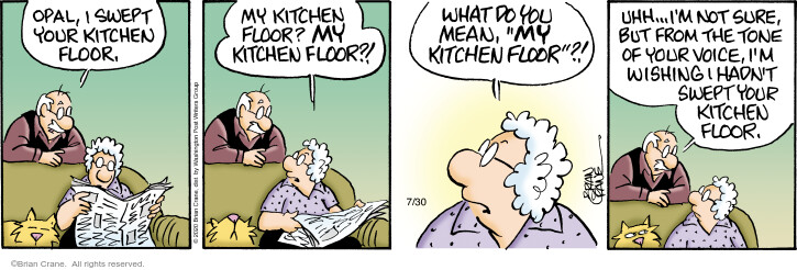 Comic Strip Brian Crane  Pickles 2020-07-30 housecleaning