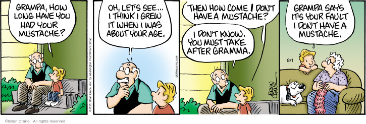 Comic Strip Brian Crane  Pickles 2020-08-01 grandson