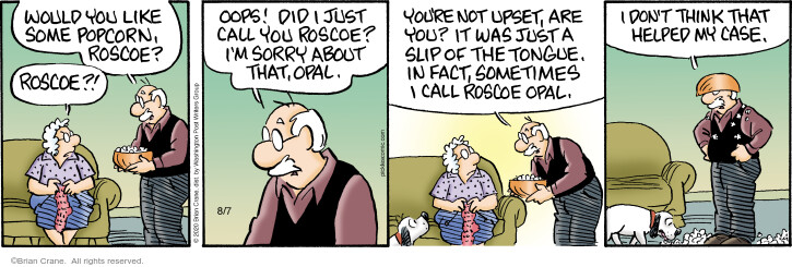Comic Strip Brian Crane  Pickles 2020-08-07 husband and wife