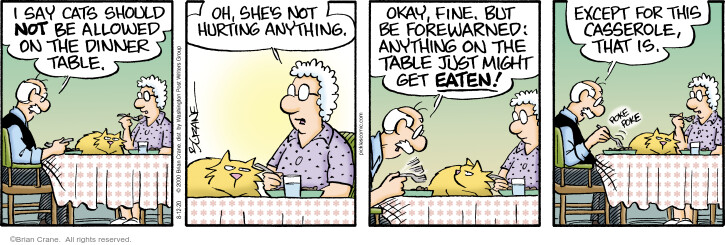 Comic Strip Brian Crane  Pickles 2020-08-12 cat