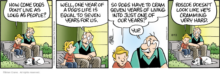 Comic Strip Brian Crane  Pickles 2020-08-13 Roscoe