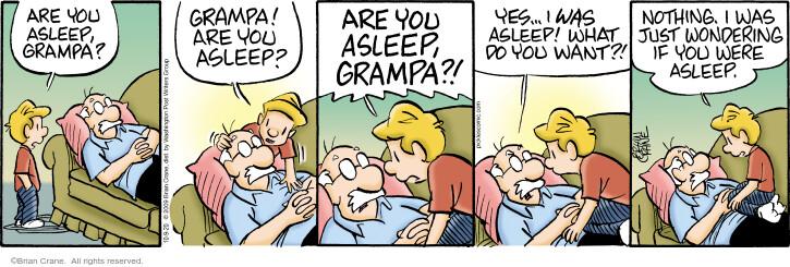 Comic Strip Brian Crane  Pickles 2020-10-09 grampa