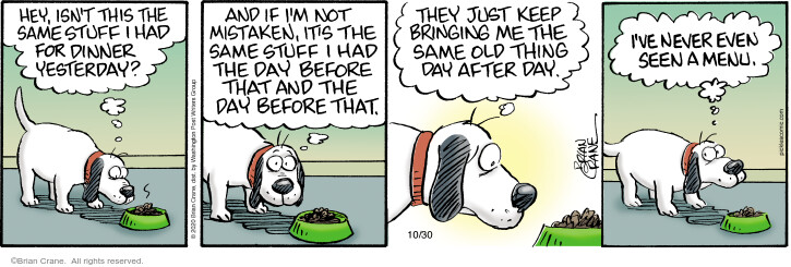 Comic Strip Brian Crane  Pickles 2020-10-30 not