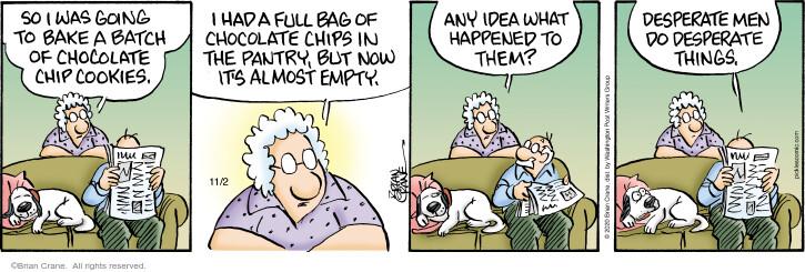 Comic Strip Brian Crane  Pickles 2020-11-02 desperate