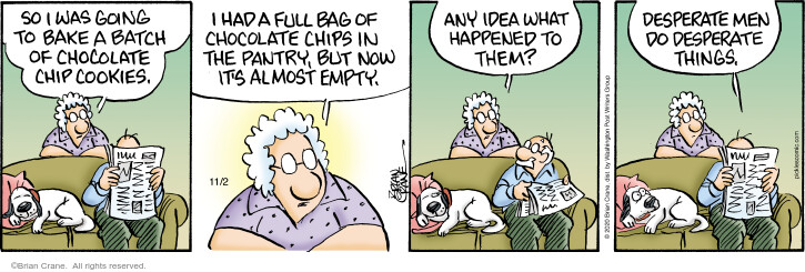 Comic Strip Brian Crane  Pickles 2020-11-02 cookie