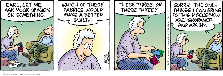 Comic Strip Brian Crane  Pickles 2020-11-06 husband and wife