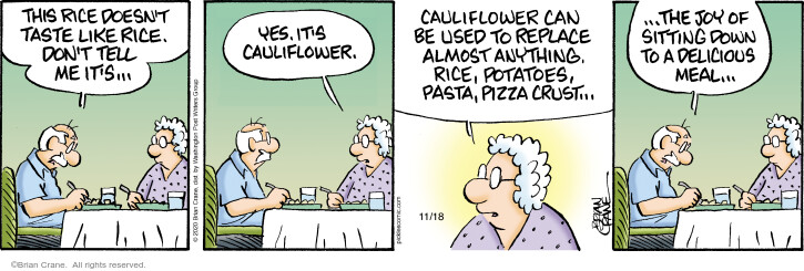 Comic Strip Brian Crane  Pickles 2020-11-18 pizza