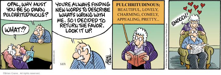 Comic Strip Brian Crane  Pickles 2020-12-01 why