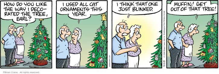 Comic Strip Brian Crane  Pickles 2020-12-02 holiday