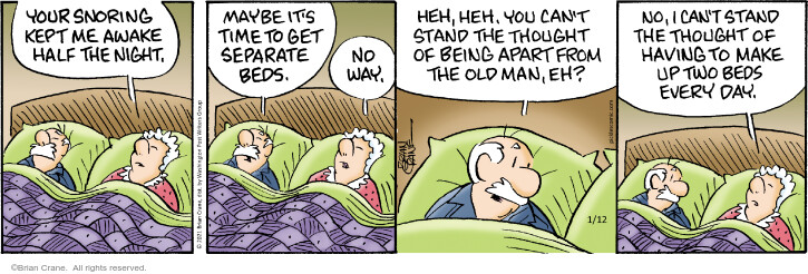 Comic Strip Brian Crane  Pickles 2021-01-12 housecleaning