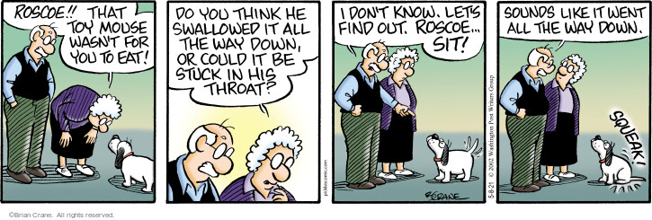 Comic Strip Brian Crane  Pickles 2021-05-08 dog