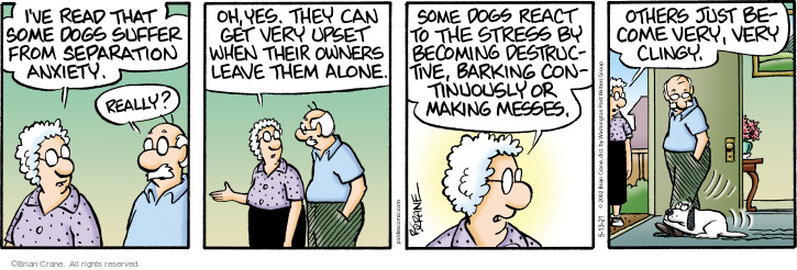 Comic Strip Brian Crane  Pickles 2021-05-13 very