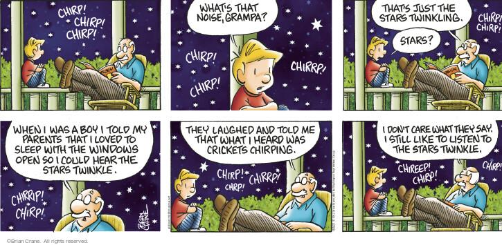 Comic Strip Brian Crane  Pickles 2021-06-06 say