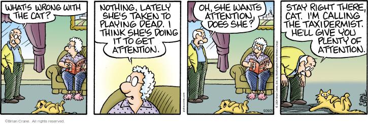 Comic Strip Brian Crane  Pickles 2021-05-26 act