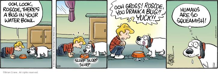 Comic Strip Brian Crane  Pickles 2021-05-29 look