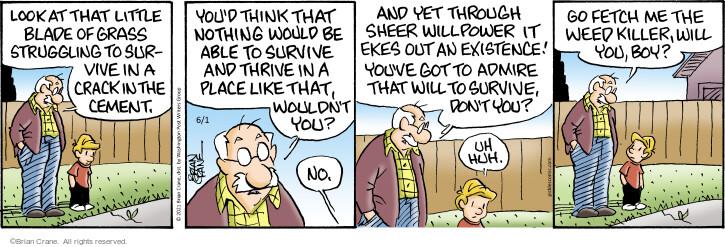 Comic Strip Brian Crane  Pickles 2021-06-01 they