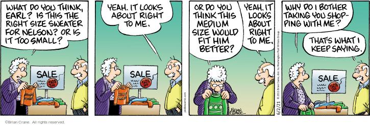 Comic Strip Brian Crane  Pickles 2021-06-02 Earl