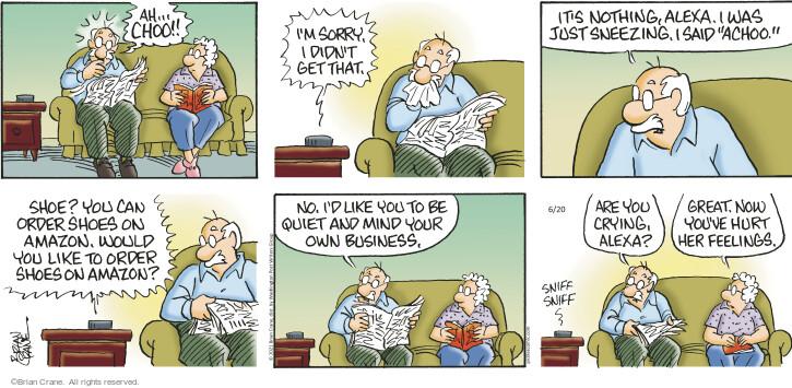 Comic Strip Brian Crane  Pickles 2021-06-20 say