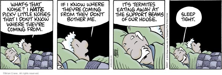 Comic Strip Brian Crane  Pickles 2021-06-09 they