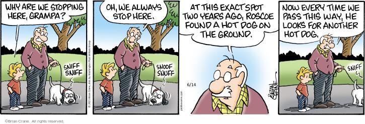 Comic Strip Brian Crane  Pickles 2021-06-14 two